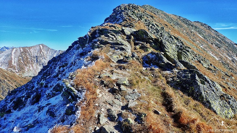 Zielony szlak na najwyższy szczyt Otargańców - Raczkową Czubę