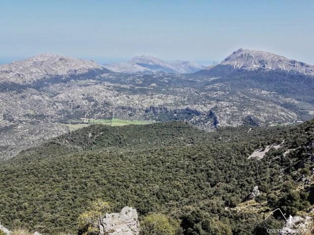 Puig Tomir (1103 m n.p.m.) - widok z podejścia na Puig d'en Galileu