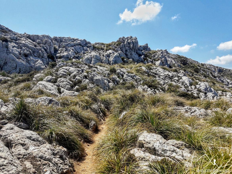 W drodze na Puig d'en Galileu - trekking na Majorce