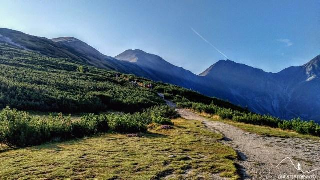 Podejście na Rakoń z Przełęczy Zabrat - widok na Rohacze