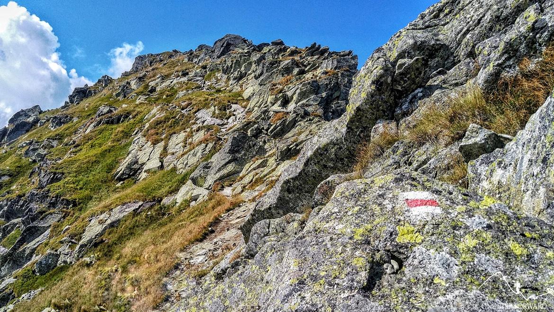 W drodze na Rohacz Płaczliwy - czerwony szlak z Rohacza Ostrego