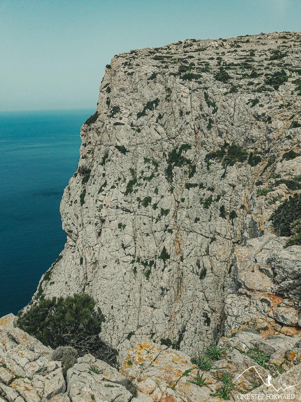 Strome skały na przylądku Formentor - Cap de Formentor, Majorka