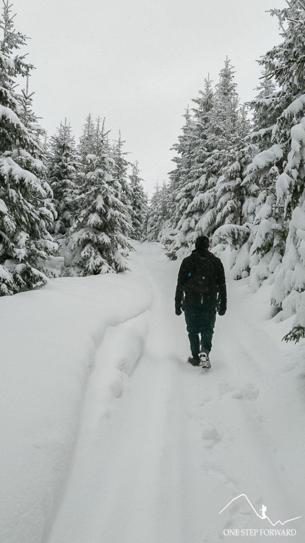 Radziejowa - zimowe warunki na trasie, Beskid Sądecki