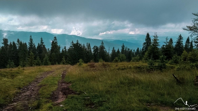 Turbacz - panorama w kierunku Tatr