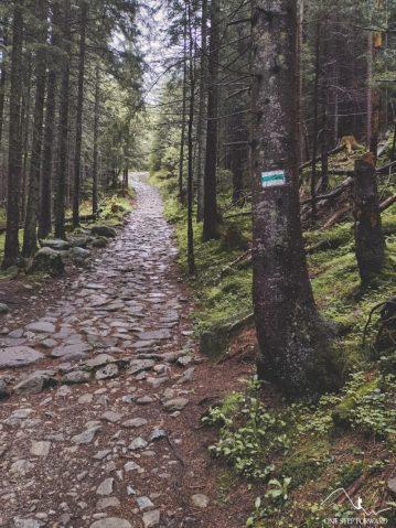 Podejście na Wielki Kopieniec zielonym szlakiem