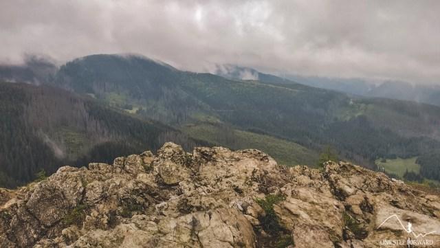 Wielki Kopieniec - widok na niebieski szlak z Kuźnic przez Boczań i Skupniów Upłaz