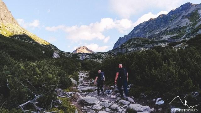 Dolina Młynicka - widok na Szczyrbski Szczyt i Grań Baszt