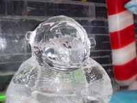 Ice_monkey