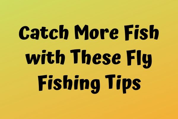 Catch More Fish with These Fly Fishing Tips