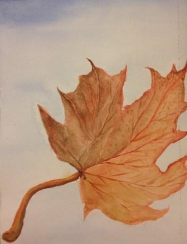 WatercolorMaple