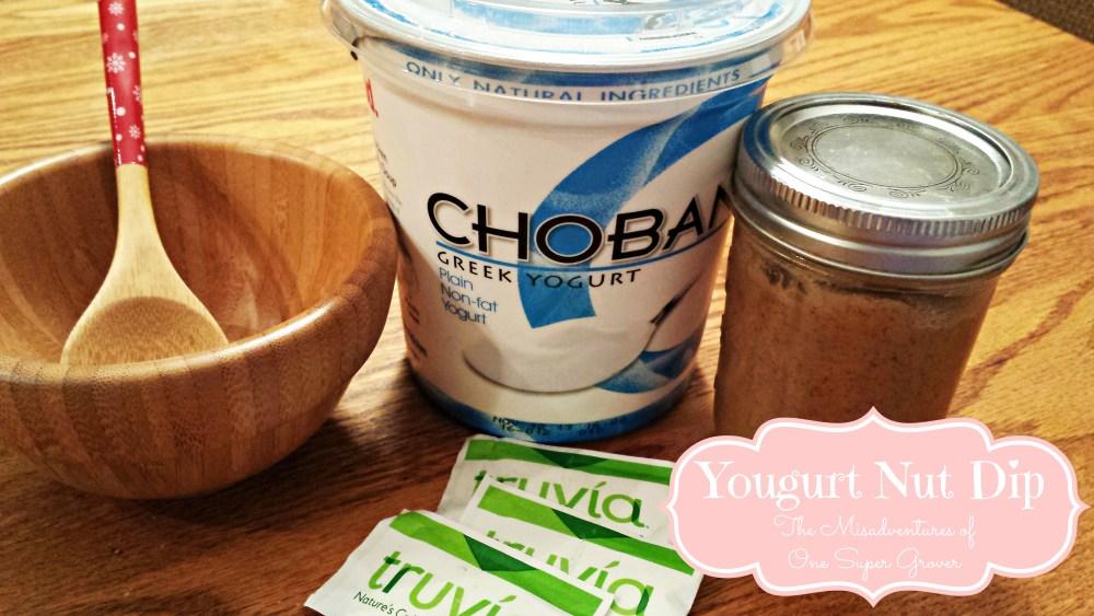 THM Friendly: Yogurt Nut Dip {E} (1/3)