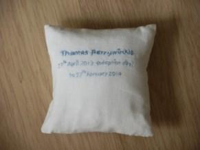 Thomas's pillow (inner)