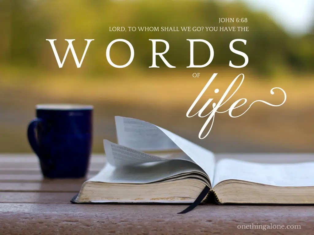 Image result for god's word is life
