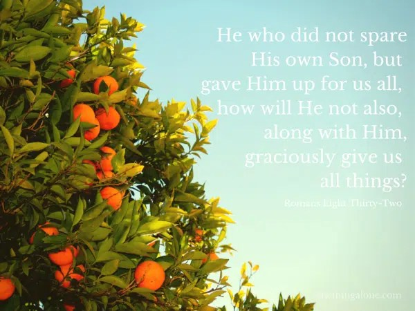 He who did not spare His own Son, but(1)