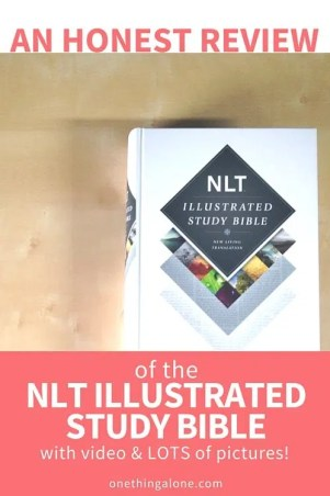 Have you heard about the NLT Illustrated Bible? I'm sharing my honest thoughts in this video and pictorial review.
