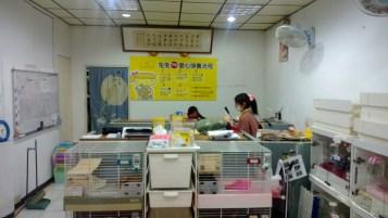 台北市愛兔之家 -1