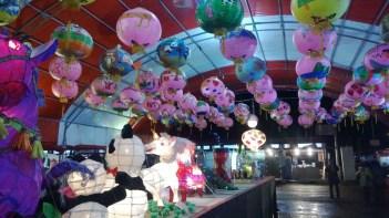 花蓮2014太平洋燈會 5