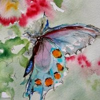 Watercolour Butterfly - artist Pat Warren