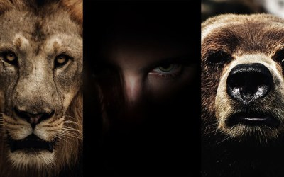 Facing a Lion, a Bear, and a Goliath