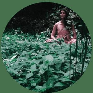 06_IntuitivePlantMedicine