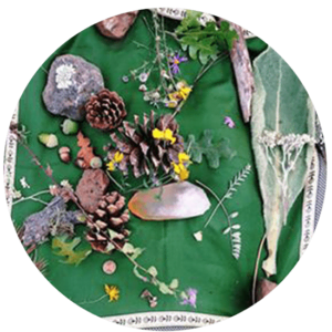 07_TraditionsWesternHerbs