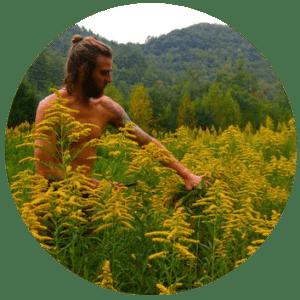 harvesting_golden_rod_circle