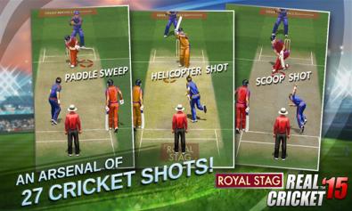 cricket 15 1