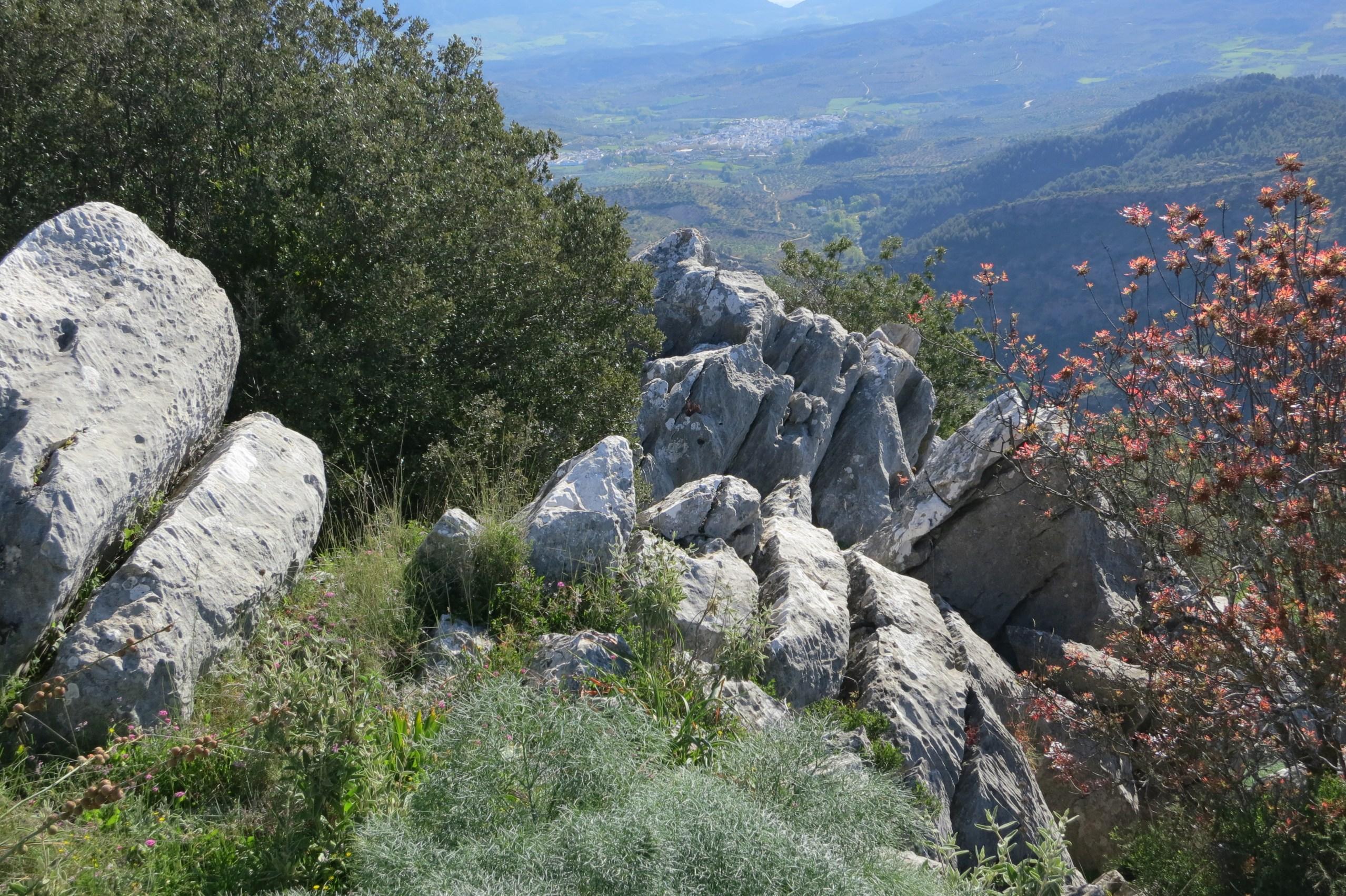 Panorama, Flora und Fauna des Mirador del Guarda Forestal