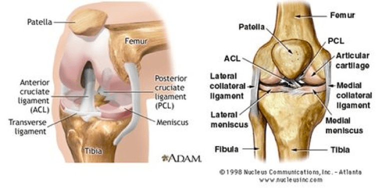 Knee injuries and what to do about it… - One World Brazilian