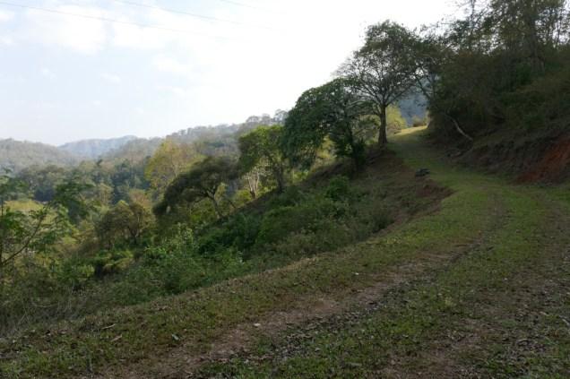 Tageswanderung in der Bergregion Keralas (Kumily)