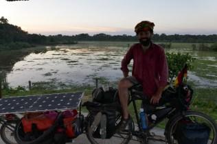 Kurz vor Jorhat führt die Strasse verkehrsberuhigt durch einen Nationalpark, sehr angenehm. Im Hintergrund weiden freilaufende Rhynos.