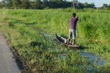 Es gibt regelmässige Überflutungen. Der umgebene Fluss bestimmt den Lebensrhytums der Bewohner. Boote sind gängiges Transportmittel.