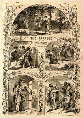 Parable_vineyard