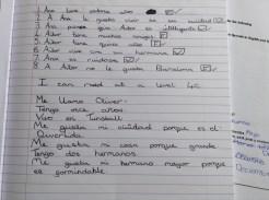 Student essay 4