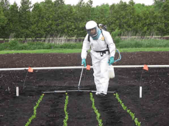 A researcher in a full spray suit applying pesticides to seedlings in the ground.