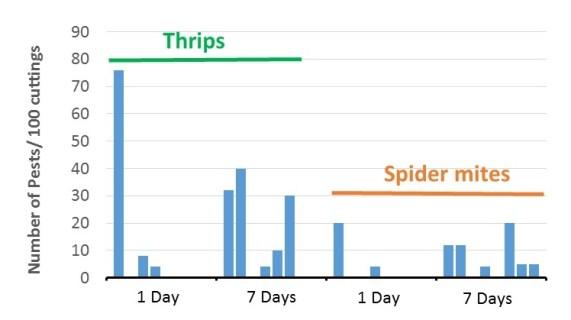 graph for June 7 blog.jpg