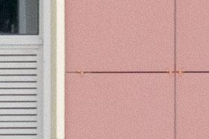 100%-ный кроп центральной части с объективом Lumix на 150 мм