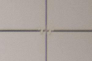 100%-ный кроп периферии с объективом Lumix на 300 мм