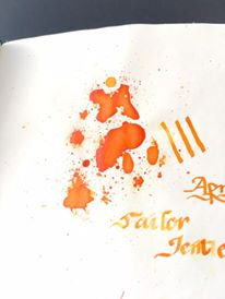 sailor-jentle-apricot-2