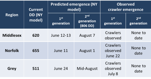SJS predictions July 23