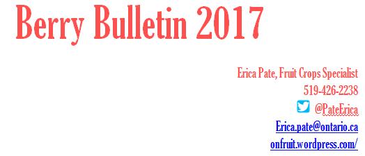BB2017
