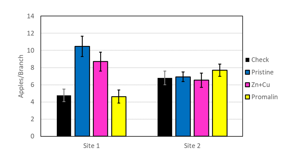Graph showing the number of apples per branch in each treatment. At site 1, the Pristine and Zinc + Copper treatments had nearly twice as much apples per branch than the untreated check