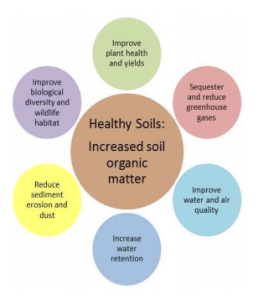 Healthy Soils Diagram