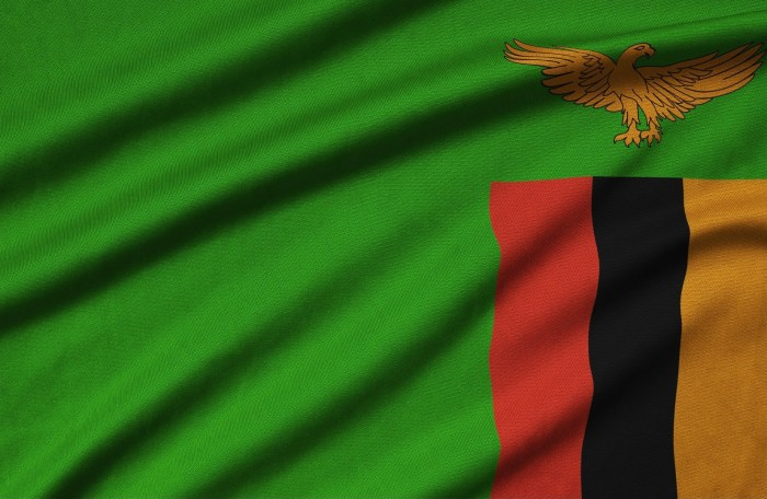 #TeamZambia