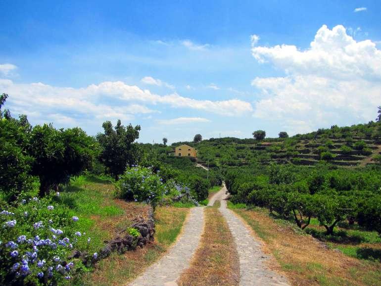 Route de la Casa Arancia à l'agritourisme en Sicile