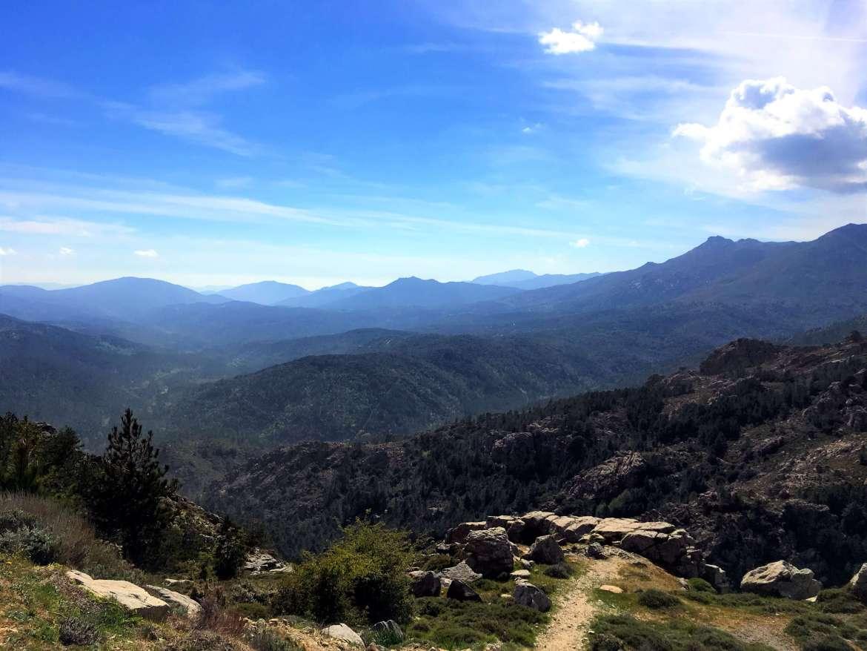 Alta Rocca en Corse du Sud