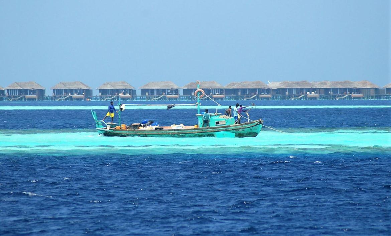 Bateau de pêche à découvrir en vacances aux Maldives