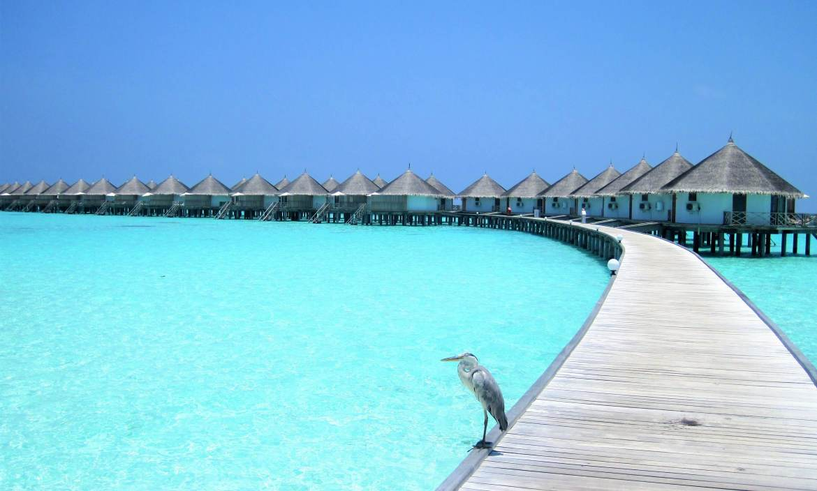 Water villa ile Maldives