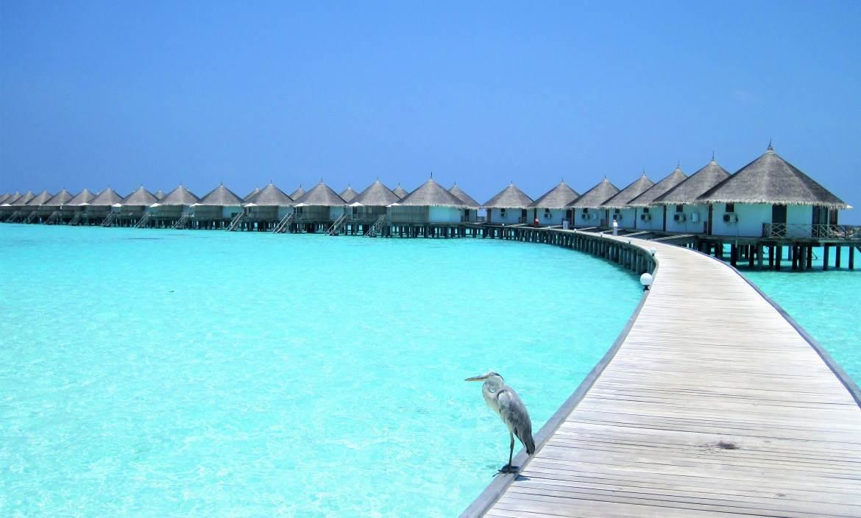 Water villa ile Maldives