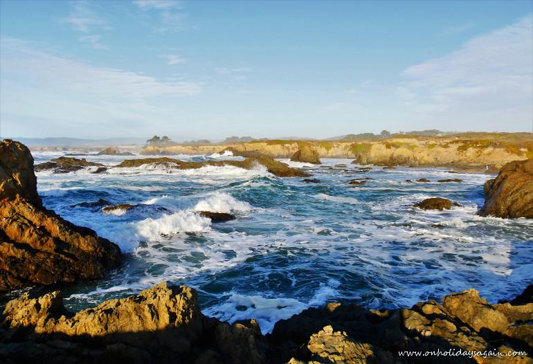 La côte de Fort Bragg en Californie du Nord